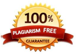 custom paper writing service - no plagiarism